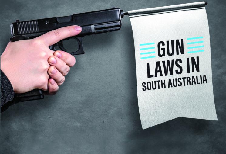 SA Gun Laws