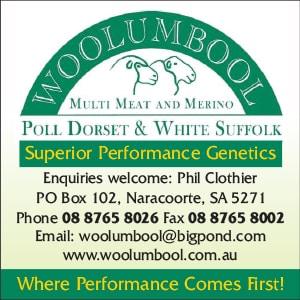 woolumbool pool Dorset ad