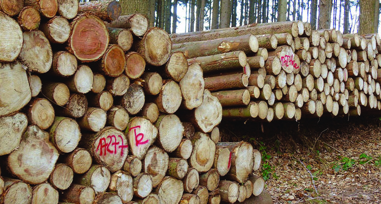 forestry-industries-1