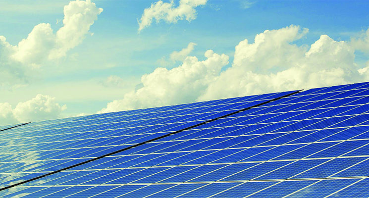 solar-farm-12